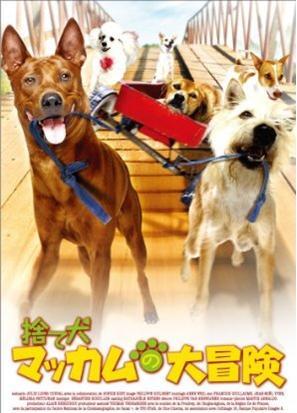 [DVD]捨て犬マッカムの大冒険「洋画 DVD ファミリー」