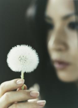 カヒミ カリィ Kahimi Karie Muhlifein 2007