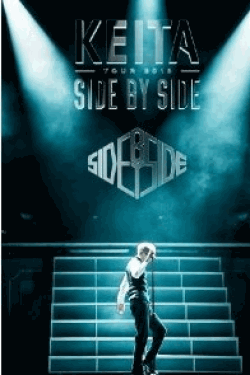 [DVD] SIDE BY SIDE TOUR 2013