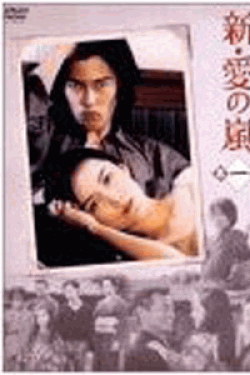 新・愛の嵐 DVD-BOX全集
