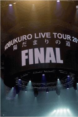 [DVD] KOBUKURO LIVE TOUR 2014