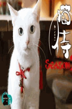 [DVD] 猫侍 SEASON2【完全版】(期間限定生産)