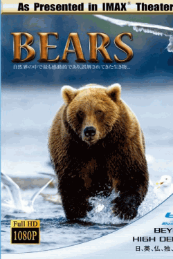 IMAX THEATER BEARS