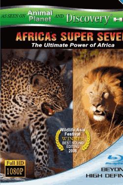 AFRICAS SUPER SEVEN アフリカの覇者達