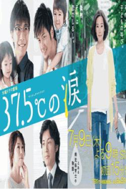 [DVD] 37.5℃の涙【完全版】(初回生産限定版)