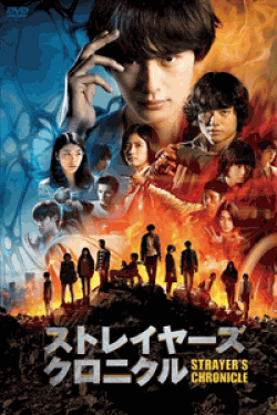 [DVD] ストレイヤーズ・クロニクル