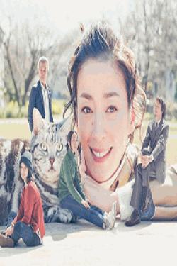 [DVD] 連続ドラマW グーグーだって猫である2 -good good the fortune cat【完全版】(初回生産限定版)