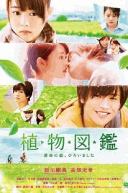 [DVD] 植物図鑑 運命の恋、ひろいました