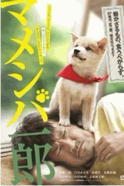 映画版 マメシバ一郎