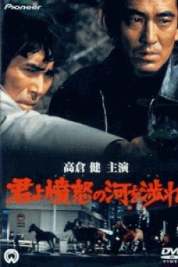 [DVD] 君よ憤怒の河を渉れ