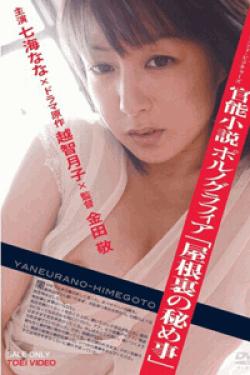 [DVD] 官能小説 ポルノグラフィア「屋根裏の秘め事」