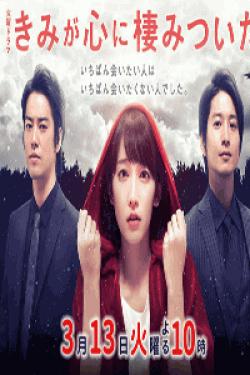 [DVD] きみが心に棲みついた【完全版】(初回生産限定版)