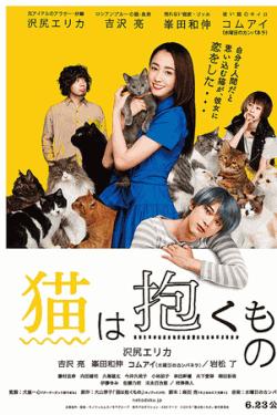 [DVD] 猫は抱くもの