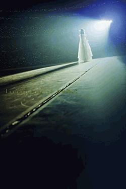 [Blu-ray] いつのまにか、ここにいる Documentary of 乃木坂46 Blu-rayスペシャル・エディション