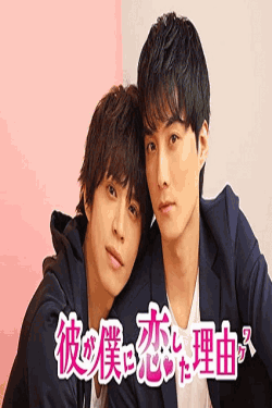 [DVD] 彼が僕に恋した理由