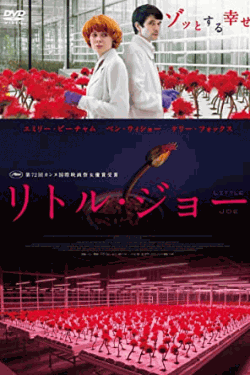 [DVD] リトル・ジョー