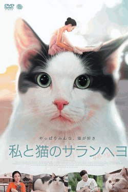 [DVD] 私と猫のサランヘヨ