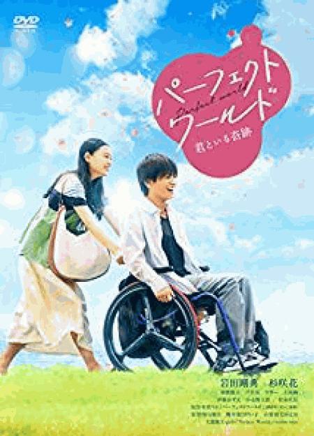 [DVD] パーフェクトワールド 君といる奇跡