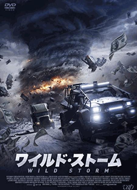 [DVD] ワイルド・ストーム