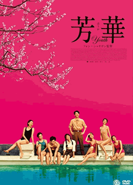 [DVD] 芳華-Youth-